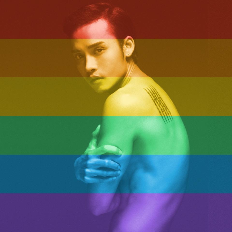 Sau khi luật hợp pháp hóa hôn nhân đồng giới được thông qua trên toàn nước Mỹ, nhiều sao Việt chuyển avatar trang cá nhân sang hình ảnh lục sắc để bày tỏ sự ủng hô